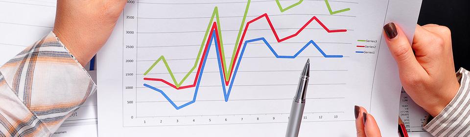 Overzicht van de bedrijfsboekhouding